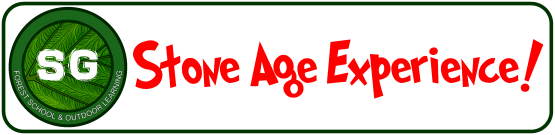Stone Age 2020